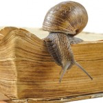 Snail on an old book